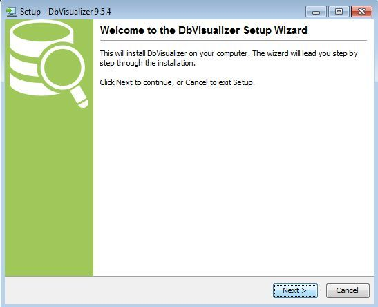 dbvisualizer setup wizard
